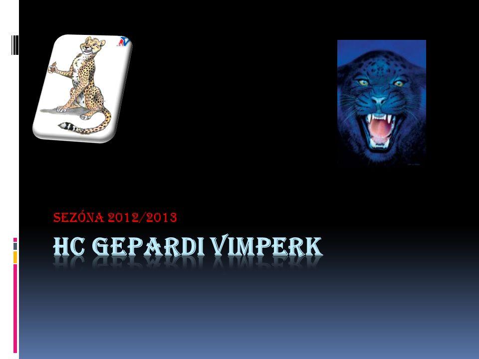 SEZÓNA 2012/2013