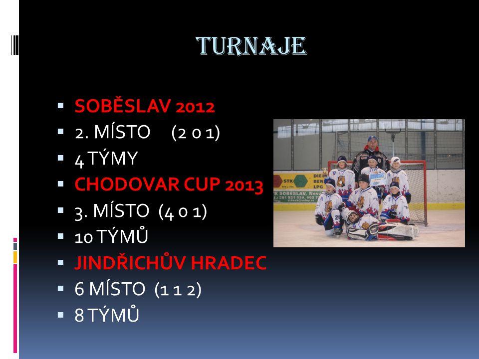 TURNAJE  SOBĚSLAV 2012  2. MÍSTO (2 0 1)  4 TÝMY  CHODOVAR CUP 2013  3. MÍSTO (4 0 1)  10 TÝMŮ  JINDŘICHŮV HRADEC  6 MÍSTO (1 1 2)  8 TÝMŮ