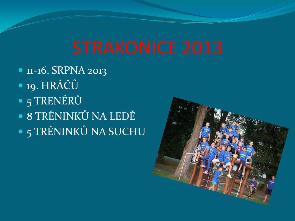STRAKONICE 2013 11-16. SRPNA 2013 19. HRÁČŮ 5 TRENÉRŮ 8 TRÉNINKŮ NA LEDĚ 5 TRÉNINKŮ NA SUCHU