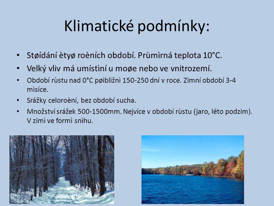 Klimatické podmínky: Støídání ètyø roèních období.