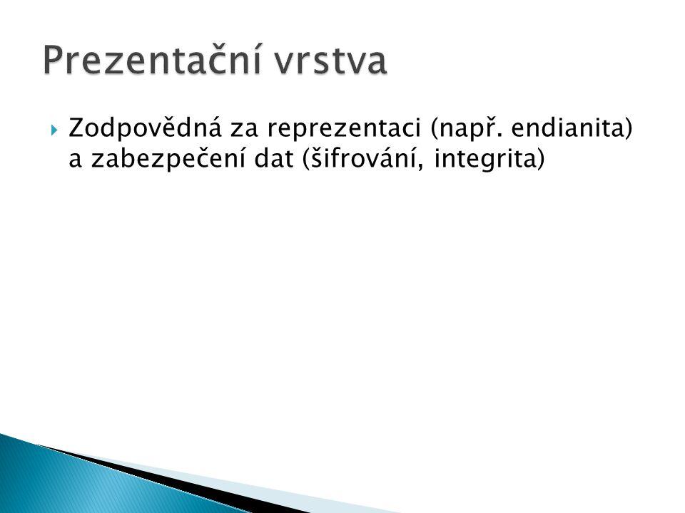  Zodpovědná za reprezentaci (např. endianita) a zabezpečení dat (šifrování, integrita)