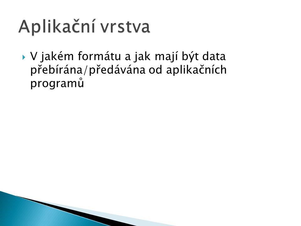  V jakém formátu a jak mají být data přebírána/předávána od aplikačních programů