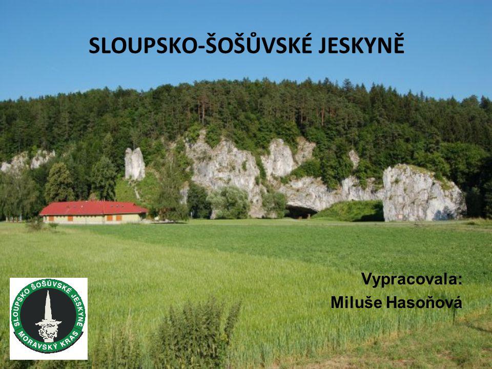 SLOUPSKO-ŠOŠŮVSKÉ JESKYNĚ Vypracovala: Miluše Hasoňová