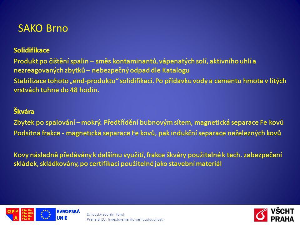 Evropský sociální fond Praha & EU: Investujeme do vaší budoucnosti SAKO Brno Solidifikace Produkt po čištění spalin – směs kontaminantů, vápenatých so