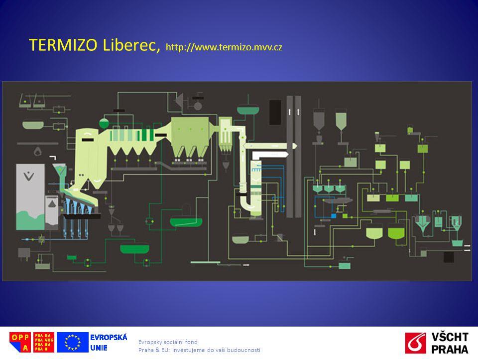 Evropský sociální fond Praha & EU: Investujeme do vaší budoucnosti TERMIZO Liberec, http://www.termizo.mvv.cz