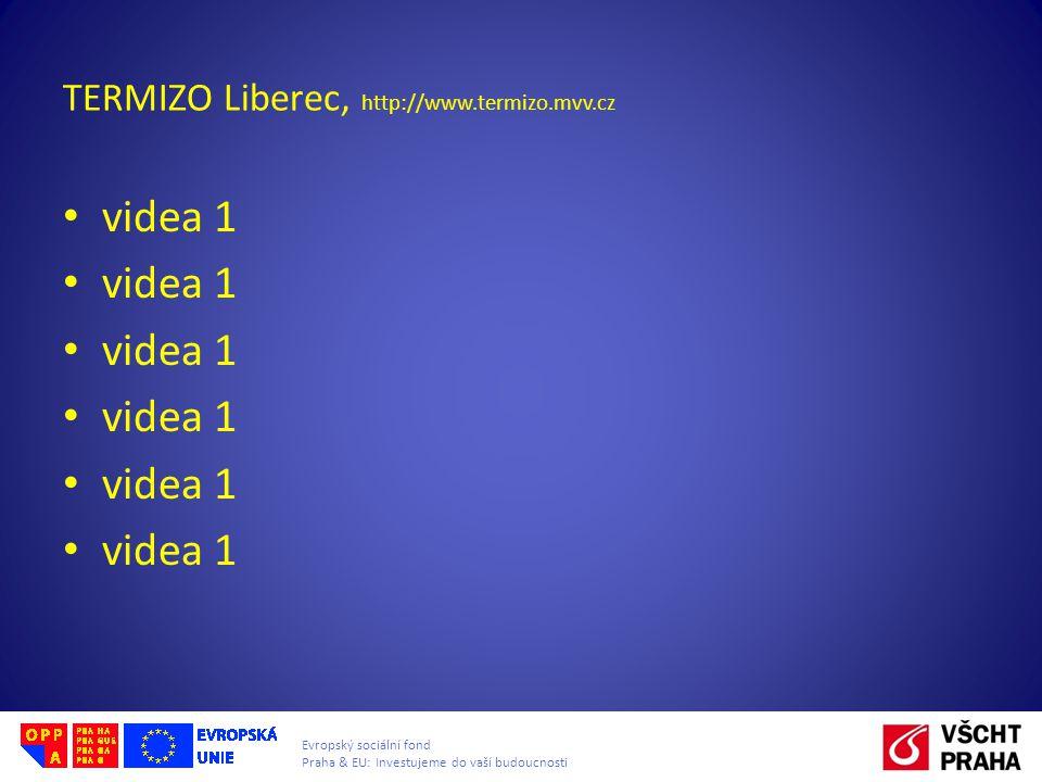 Evropský sociální fond Praha & EU: Investujeme do vaší budoucnosti TERMIZO Liberec, http://www.termizo.mvv.cz videa 1