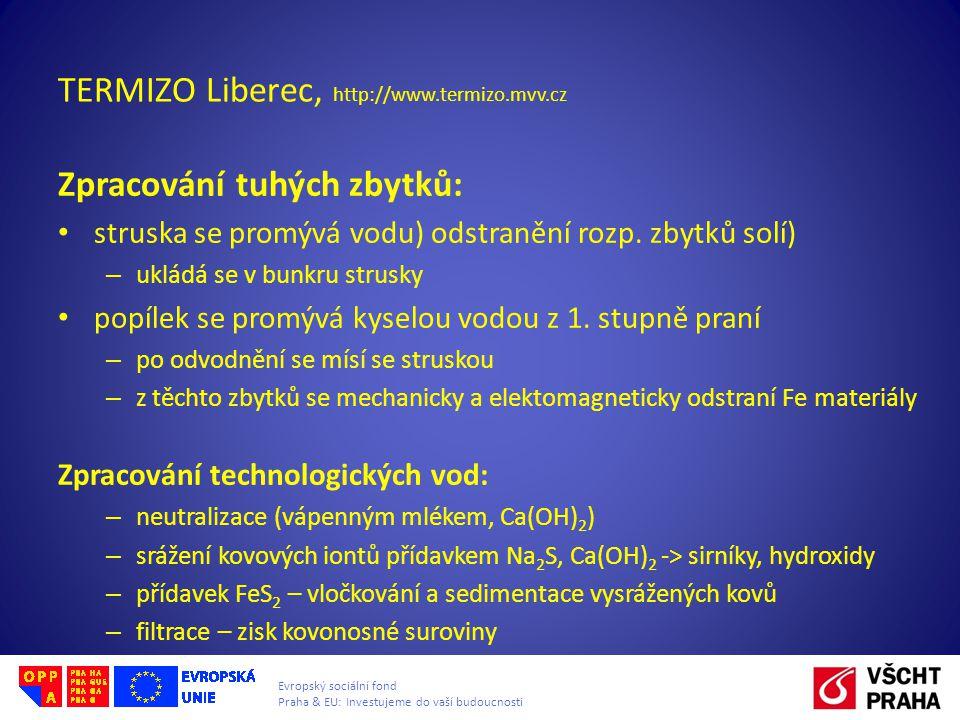 Evropský sociální fond Praha & EU: Investujeme do vaší budoucnosti TERMIZO Liberec, http://www.termizo.mvv.cz Zpracování tuhých zbytků: struska se pro