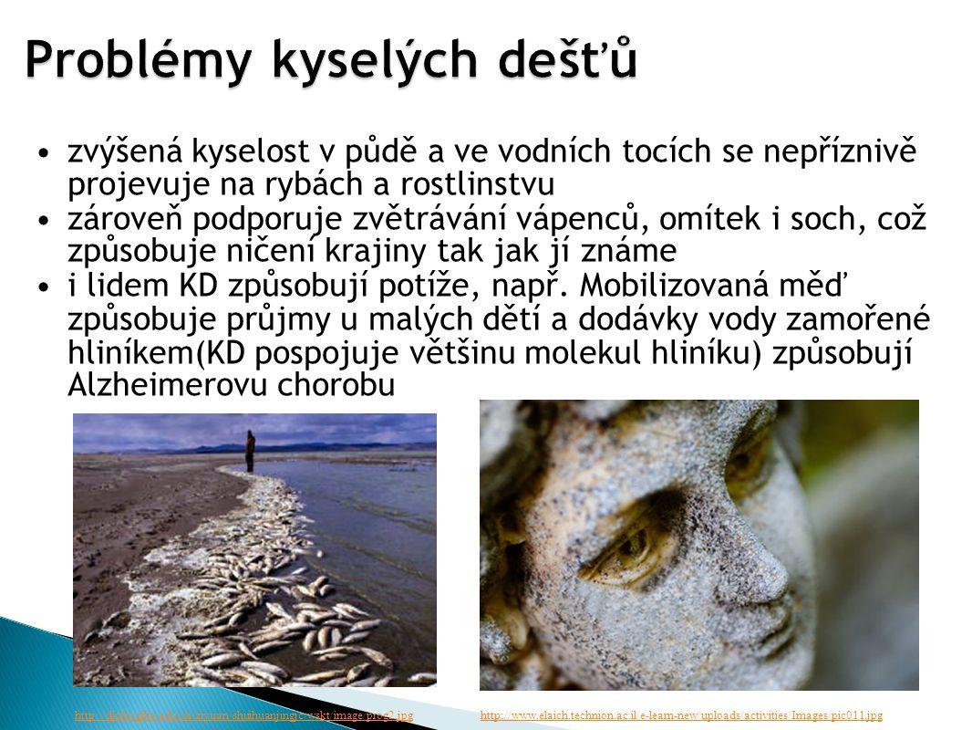 zvýšená kyselost v půdě a ve vodních tocích se nepříznivě projevuje na rybách a rostlinstvu zároveň podporuje zvětrávání vápenců, omítek i soch, což způsobuje ničení krajiny tak jak jí známe i lidem KD způsobují potíže, např.