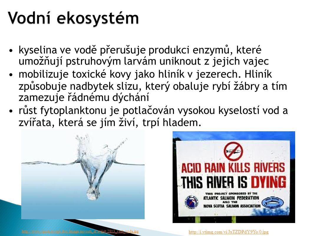 kyselina ve vodě přerušuje produkci enzymů, které umožňují pstruhovým larvám uniknout z jejich vajec mobilizuje toxické kovy jako hliník v jezerech.