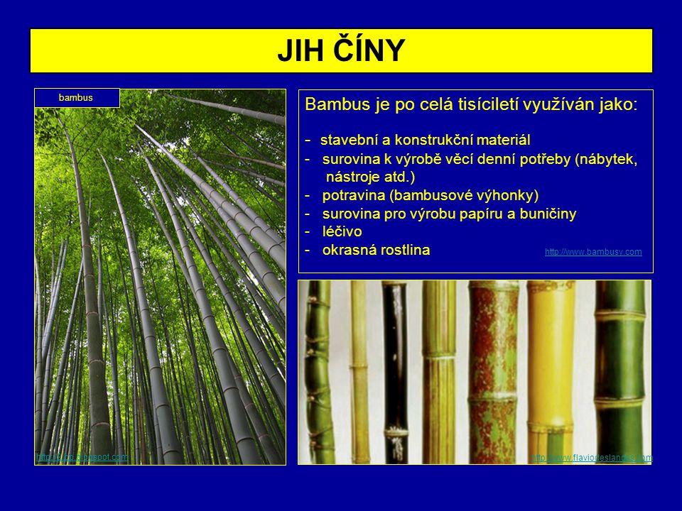 Bambus je po celá tisíciletí využíván jako: - stavební a konstrukční materiál - surovina k výrobě věcí denní potřeby (nábytek, nástroje atd.) - potrav