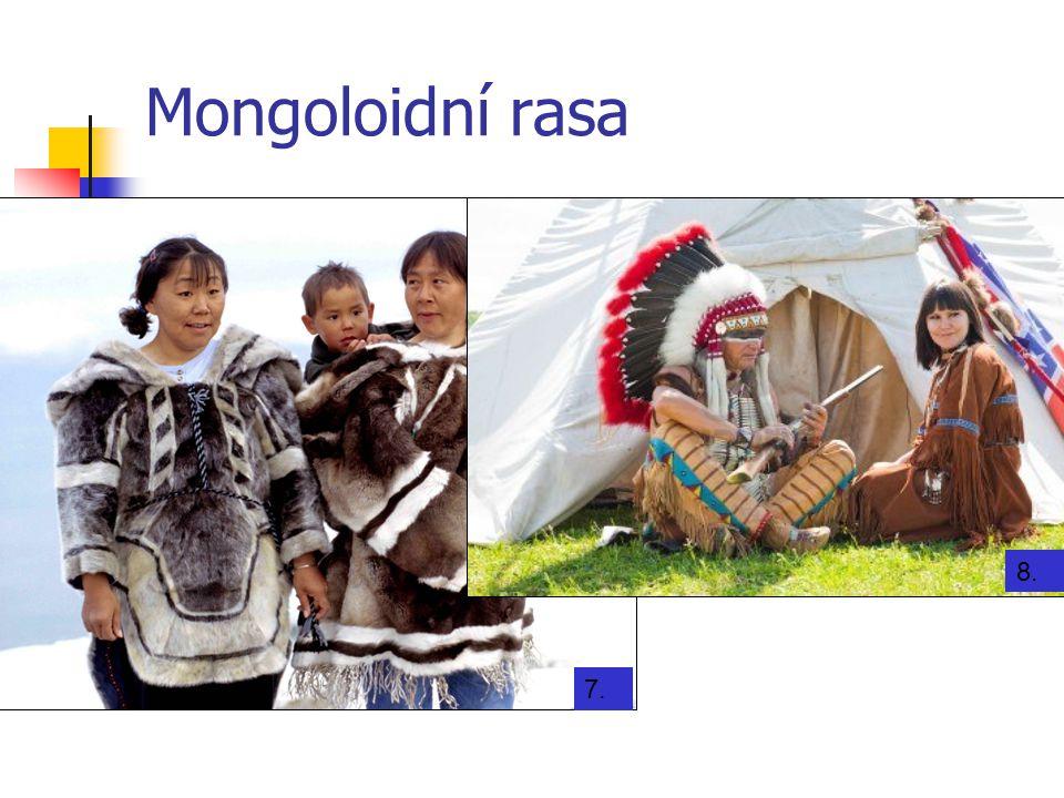 Mongoloidní rasa 7. 8.