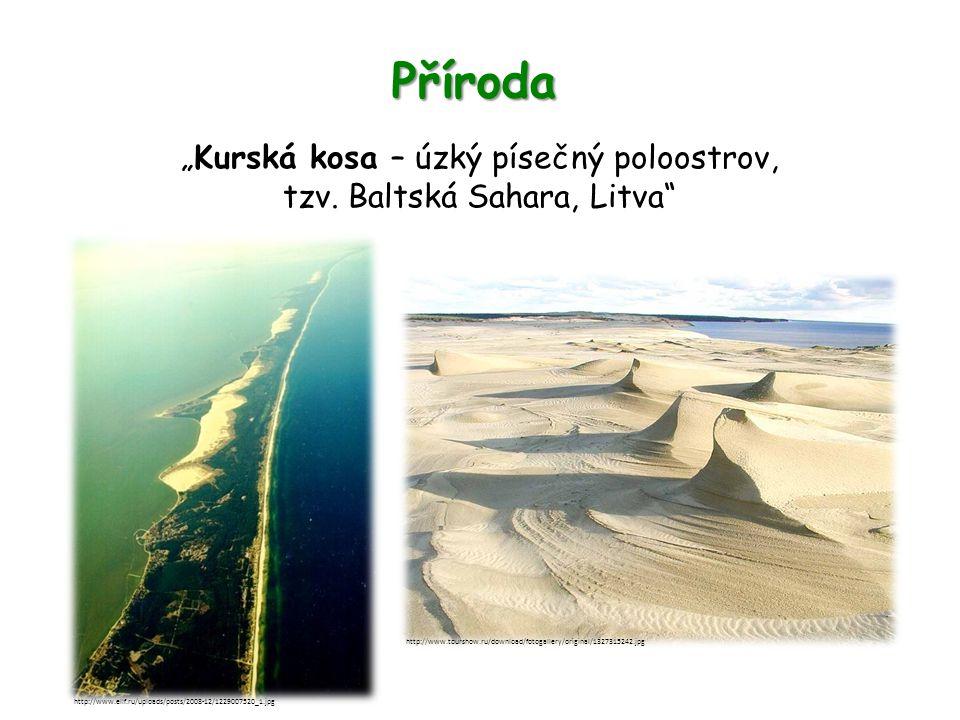 """Příroda """"Kurská kosa – úzký písečný poloostrov, tzv. Baltská Sahara, Litva"""" http://www.ellf.ru/uploads/posts/2008-12/1229007520_1.jpg http://www.tours"""
