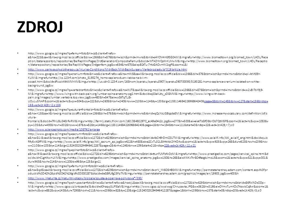 ZDROJ http://www.google.cz/imgres?q=femur+foto&hl=cs&client=firefox- a&hs=Z2S&sa=X&rls=org.mozilla:cs:official&biw=1366&bih=576&tbm=isch&prmd=imvns&tb