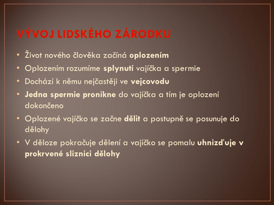 http://images.google.com/imgres?q=plod&hl=cs&gbv=2&tbm=isch&tbnid=DZaanhaLPW297M:&imgrefurl=http://magazin.ceskenoviny.cz/z dravi/zpravy/vyziva-nastavajicich-matek-vapnik/394337&docid=cFyGYgX- FlnkmM&imgurl=http://i3.cn.cz/14/1251186160_embryo.jpg&w=435&h=326&ei=5AroT7GeI4bxsgaQspmvAQ&zoom=1&biw=1440&bih =717 http://images.google.com/imgres?q=novorozenec&hl=cs&gbv=2&tbm=isch&tbnid=txbd45XYDWjzRM:&imgrefurl=http://czaktualne.blogspot.com/2009/08/porod-doma-vysoke-riziko-pro-dite- i.html&docid=WSuteDuwxTYL1M&imgurl=http://1.bp.blogspot.com/_5u49f7STCjg/SoV5r8N6uiI/AAAAAAAAADk/XXxFV6CdCP8/s400/nov orozenec.jpg&w=400&h=261&ei=ZAvoT-rUNYLetAa22cS-BA&zoom=1&biw=1440&bih=717