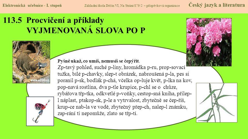113.5 Procvičení a příklady VYJMENOVANÁ SLOVA PO P Elektronická učebnice - I.