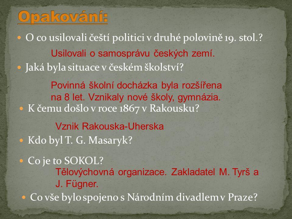 O co usilovali čeští politici v druhé polovině 19.