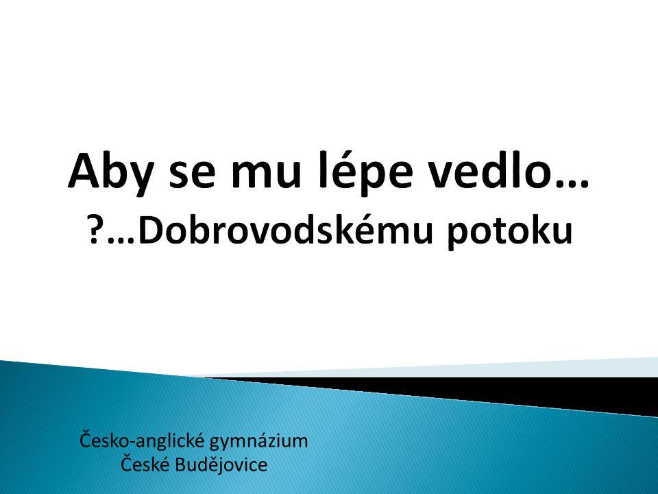 Česko-anglické gymnázium České Budějovice