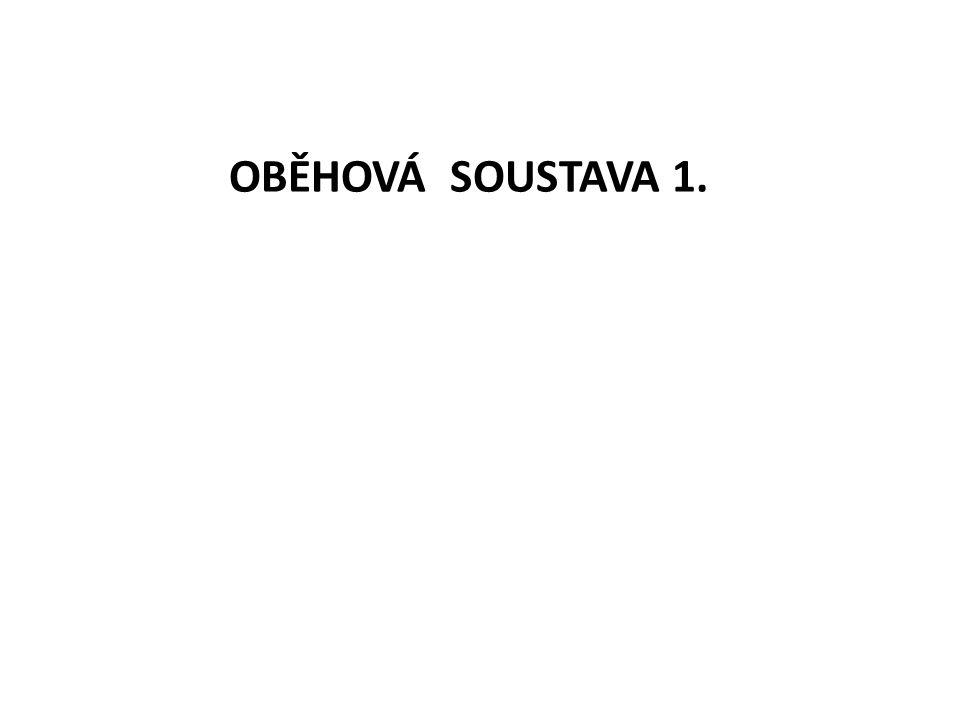 OBĚHOVÁ SOUSTAVA 1.