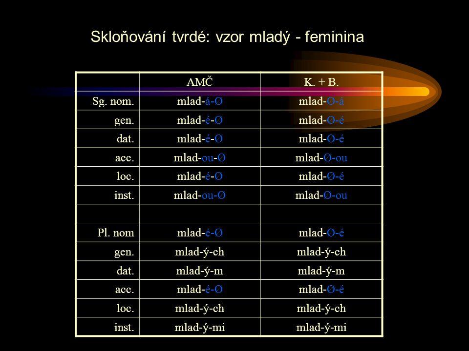 AMČK. + B. Sg. nom.mlad-á-Ømlad-Ø-á gen.mlad-é-Ømlad-Ø-é dat.mlad-é-Ømlad-Ø-é acc.mlad-ou-Ømlad-Ø-ou loc.mlad-é-Ømlad-Ø-é inst.mlad-ou-Ømlad-Ø-ou Pl.