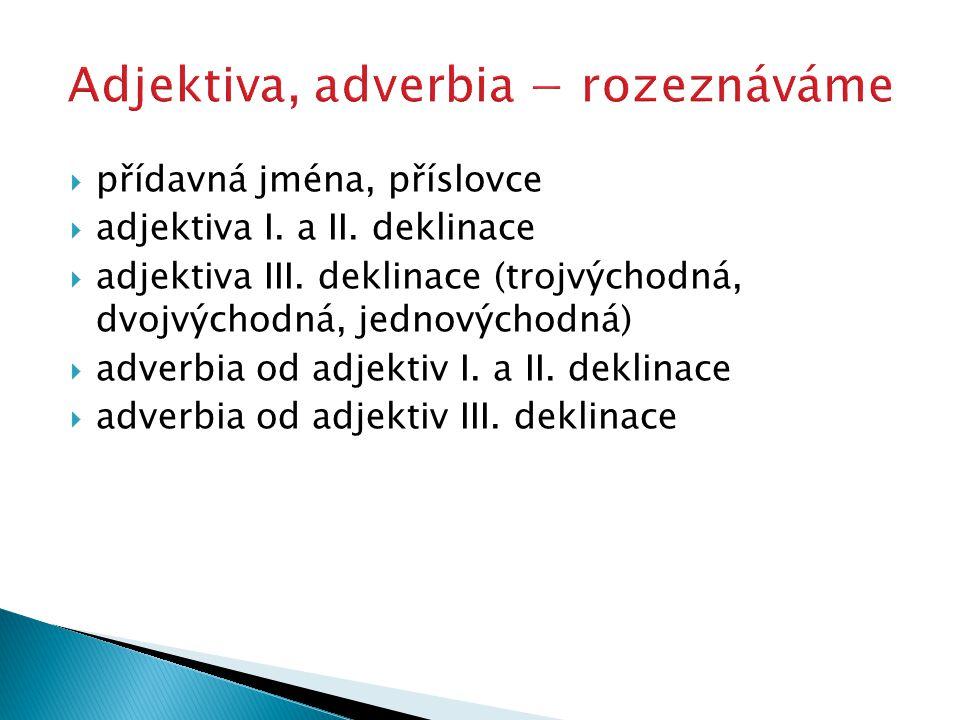  přídavná jména, příslovce  adjektiva I. a II. deklinace  adjektiva III. deklinace (trojvýchodná, dvojvýchodná, jednovýchodná)  adverbia od adjekt