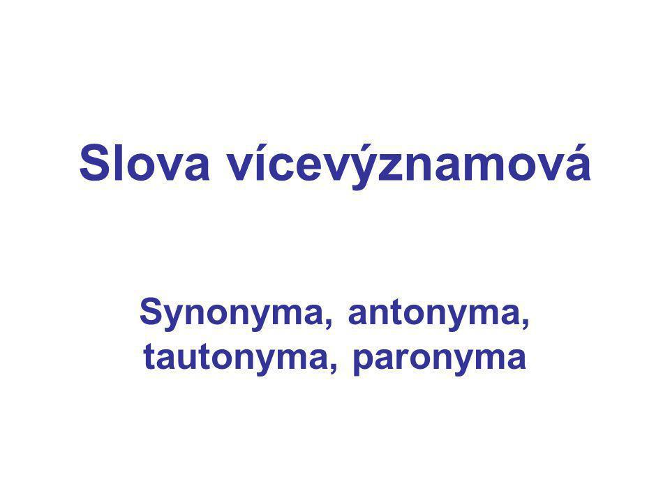 Slova vícevýznamová Synonyma, antonyma, tautonyma, paronyma