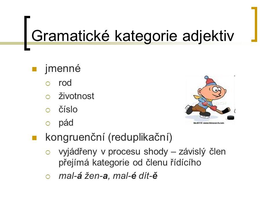 Gramatické kategorie adjektiv jmenné  rod  životnost  číslo  pád kongruenční (reduplikační)  vyjádřeny v procesu shody – závislý člen přejímá kategorie od členu řídícího  mal-á žen-a, mal-é dít-ě