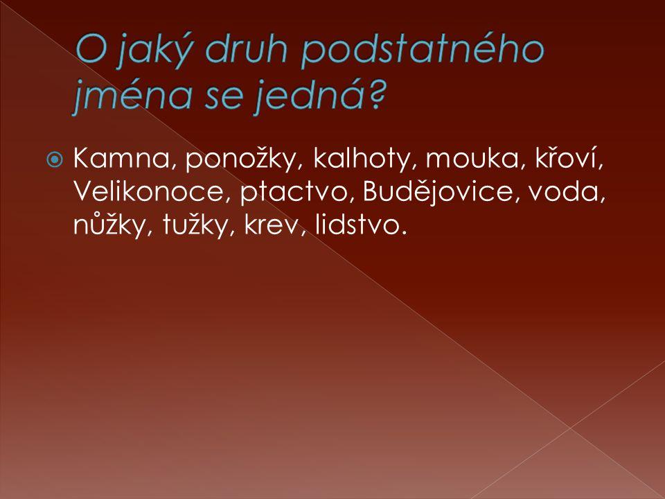  Kamna, ponožky, kalhoty, mouka, křoví, Velikonoce, ptactvo, Budějovice, voda, nůžky, tužky, krev, lidstvo.