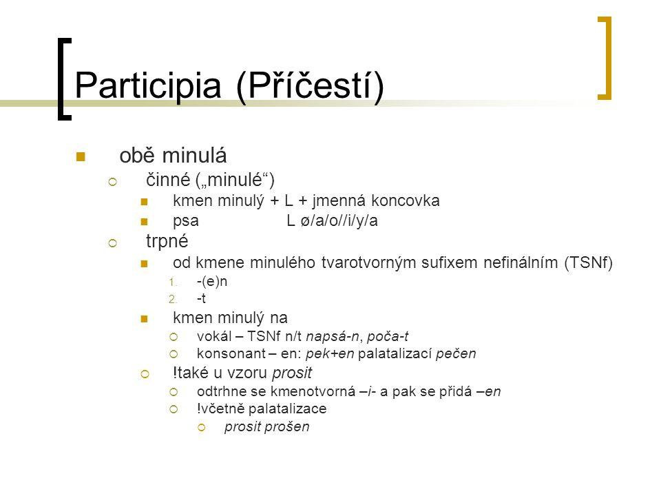 """Participia (Příčestí) obě minulá  činné (""""minulé"""") kmen minulý + L + jmenná koncovka psa L ø/a/o//i/y/a  trpné od kmene minulého tvarotvorným sufixe"""