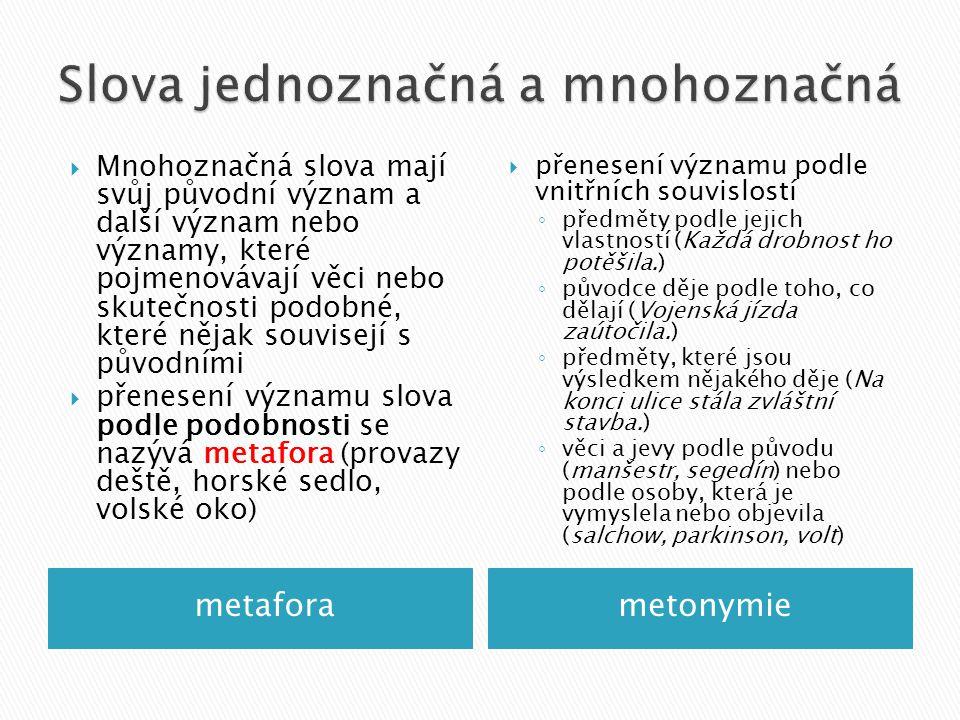 metaforametonymie  Mnohoznačná slova mají svůj původní význam a další význam nebo významy, které pojmenovávají věci nebo skutečnosti podobné, které nějak souvisejí s původními  přenesení významu slova podle podobnosti se nazývá metafora (provazy deště, horské sedlo, volské oko)  přenesení významu podle vnitřních souvislostí ◦ předměty podle jejich vlastností (Každá drobnost ho potěšila.) ◦ původce děje podle toho, co dělají (Vojenská jízda zaútočila.) ◦ předměty, které jsou výsledkem nějakého děje (Na konci ulice stála zvláštní stavba.) ◦ věci a jevy podle původu (manšestr, segedín) nebo podle osoby, která je vymyslela nebo objevila (salchow, parkinson, volt)