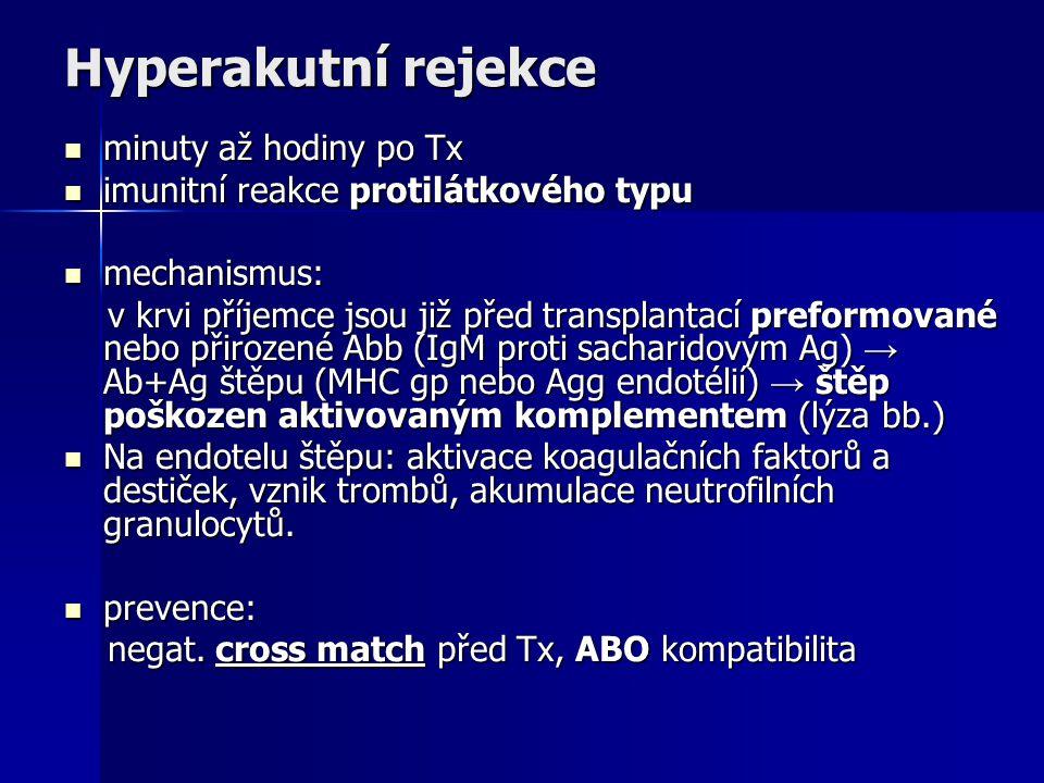 Hyperakutní rejekce minuty až hodiny po Tx minuty až hodiny po Tx imunitní reakce protilátkového typu imunitní reakce protilátkového typu mechanismus: mechanismus: v krvi příjemce jsou již před transplantací preformované nebo přirozené Abb (IgM proti sacharidovým Ag) → Ab+Ag štěpu (MHC gp nebo Agg endotélií) → štěp poškozen aktivovaným komplementem (lýza bb.) v krvi příjemce jsou již před transplantací preformované nebo přirozené Abb (IgM proti sacharidovým Ag) → Ab+Ag štěpu (MHC gp nebo Agg endotélií) → štěp poškozen aktivovaným komplementem (lýza bb.) Na endotelu štěpu: aktivace koagulačních faktorů a destiček, vznik trombů, akumulace neutrofilních granulocytů.