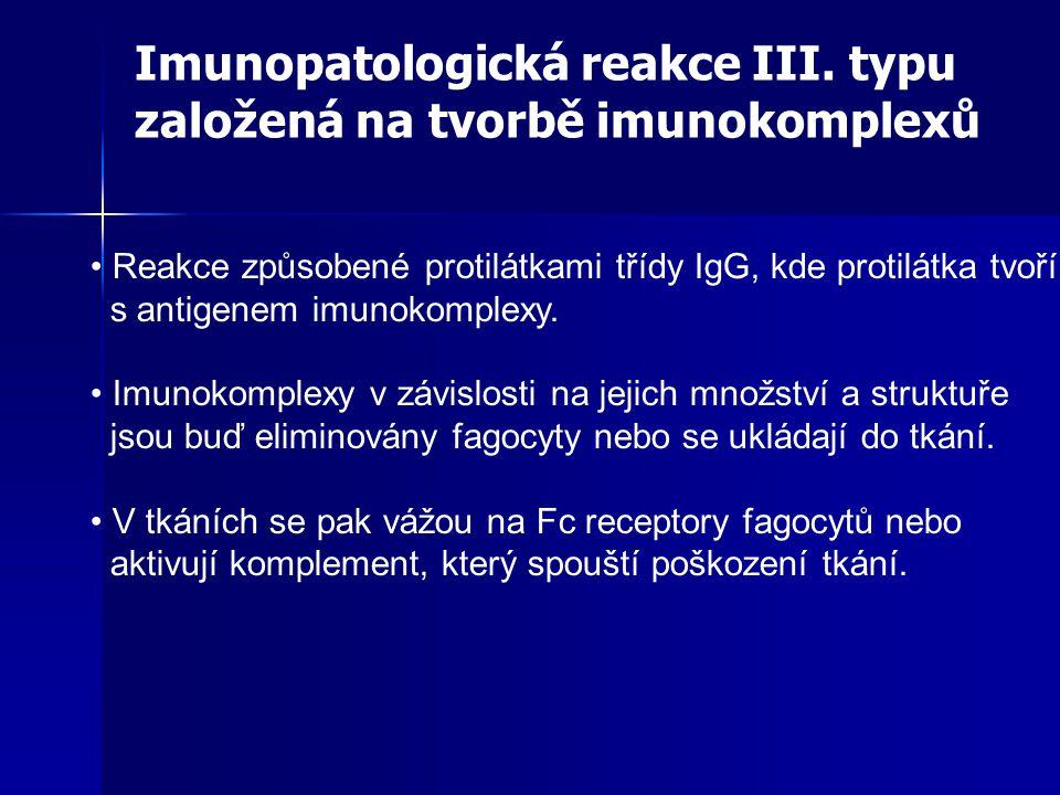 Reakce způsobené protilátkami třídy IgG, kde protilátka tvoří s antigenem imunokomplexy.