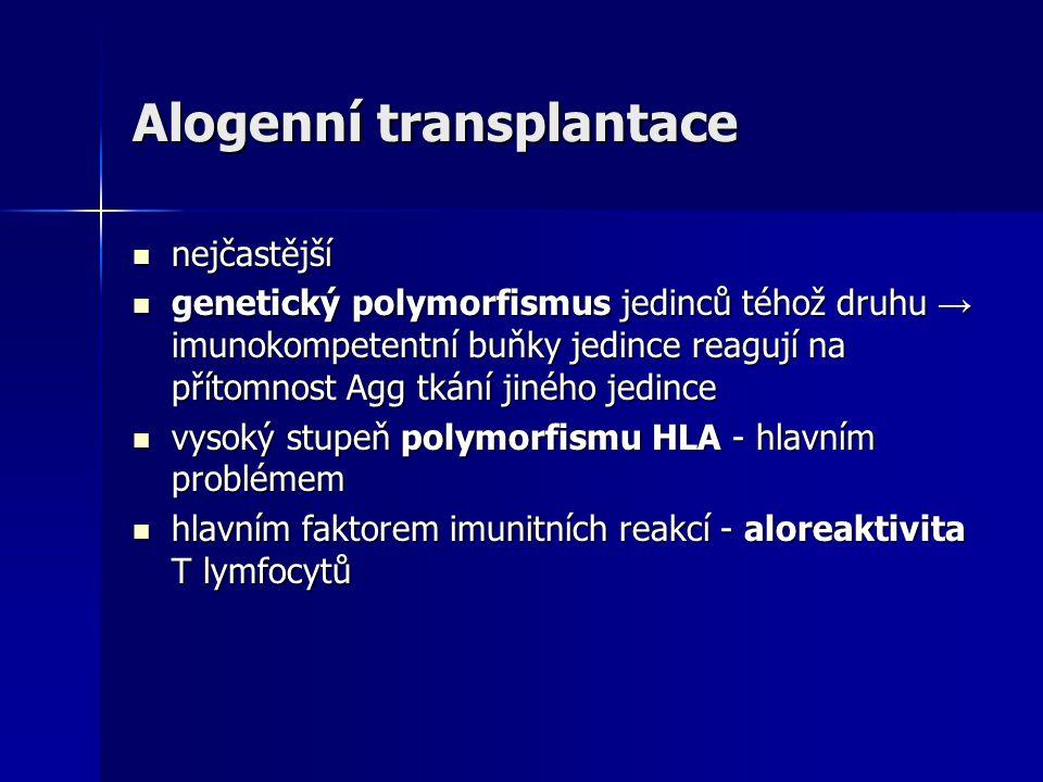 Příklady: transfúzní reakce při podání inkompaktibilní krve hemolytická nemoc novorozenců (protilátky proti antigenu RhD) idiopatická autoimunitní trombocytopenie (antitrombocytární protilátky) Goodpastureov syndrom (protilátky proti bazální membráně glomerulů) Vaskulitídy (protilátky proti cytoplazmatickým antigenům neutrofilů, ANCA)