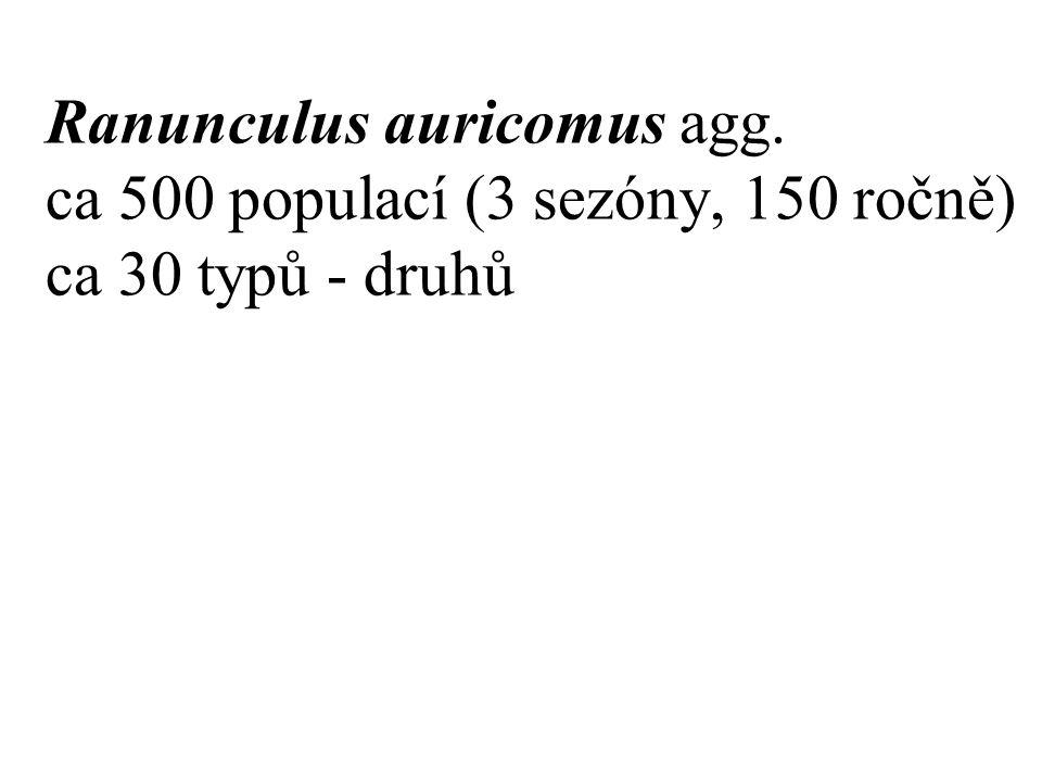 Ranunculus auricomus agg. ca 500 populací (3 sezóny, 150 ročně) ca 30 typů - druhů