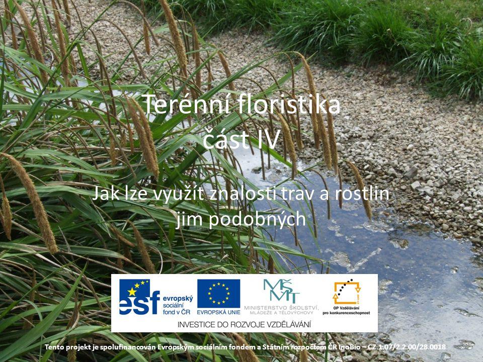 Terénní floristika část IV Jak lze využít znalosti trav a rostlin jim podobných Tento projekt je spolufinancován Evropským sociálním fondem a Státním