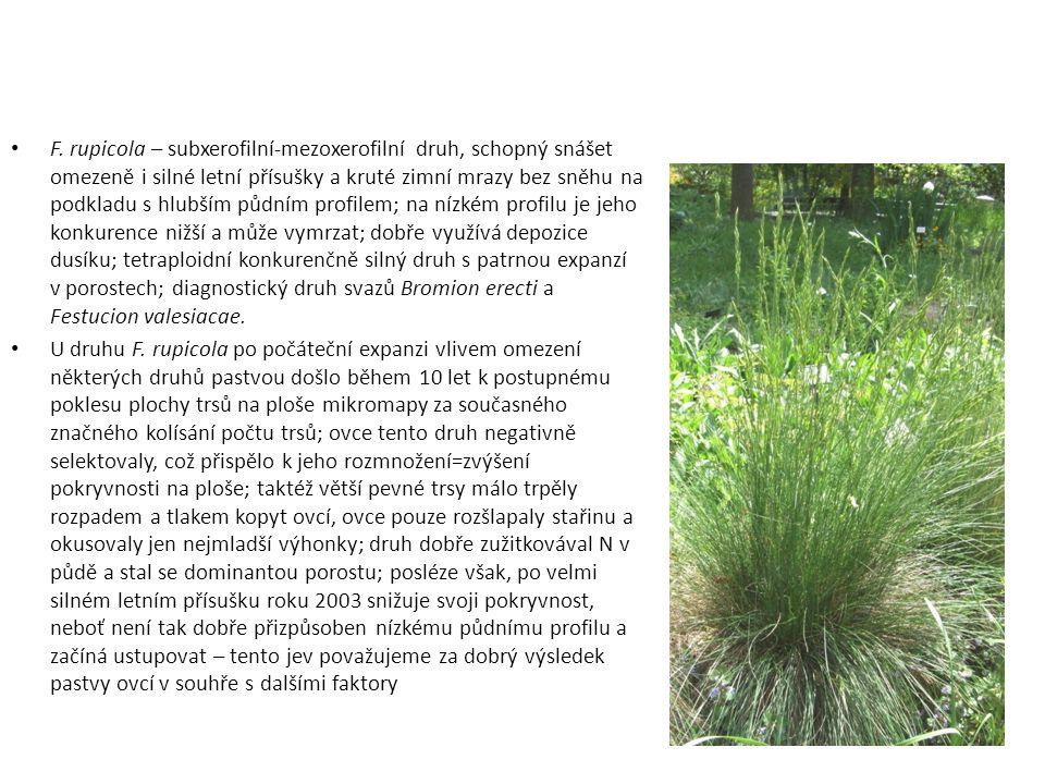 F. rupicola – subxerofilní-mezoxerofilní druh, schopný snášet omezeně i silné letní přísušky a kruté zimní mrazy bez sněhu na podkladu s hlubším půdní