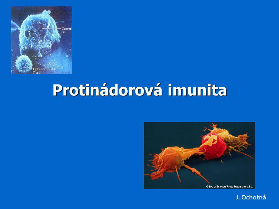 Protinádorová imunita J. Ochotná