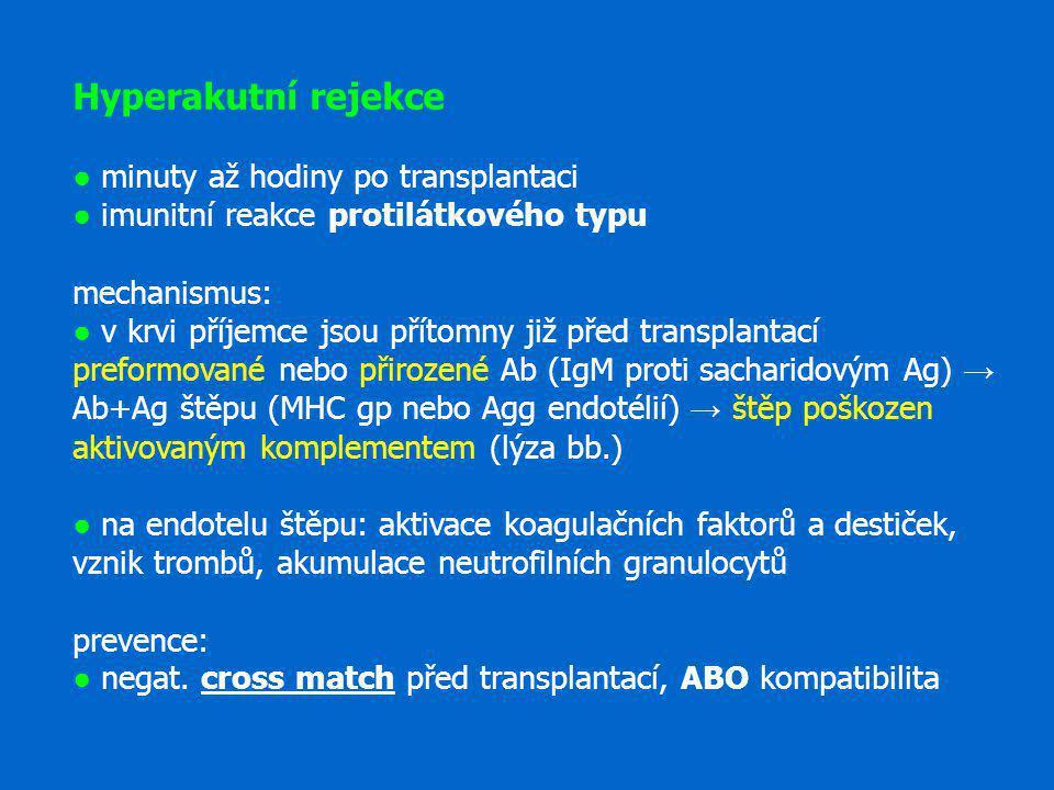 Hyperakutní rejekce ● minuty až hodiny po transplantaci ● imunitní reakce protilátkového typu mechanismus: ● v krvi příjemce jsou přítomny již před tr