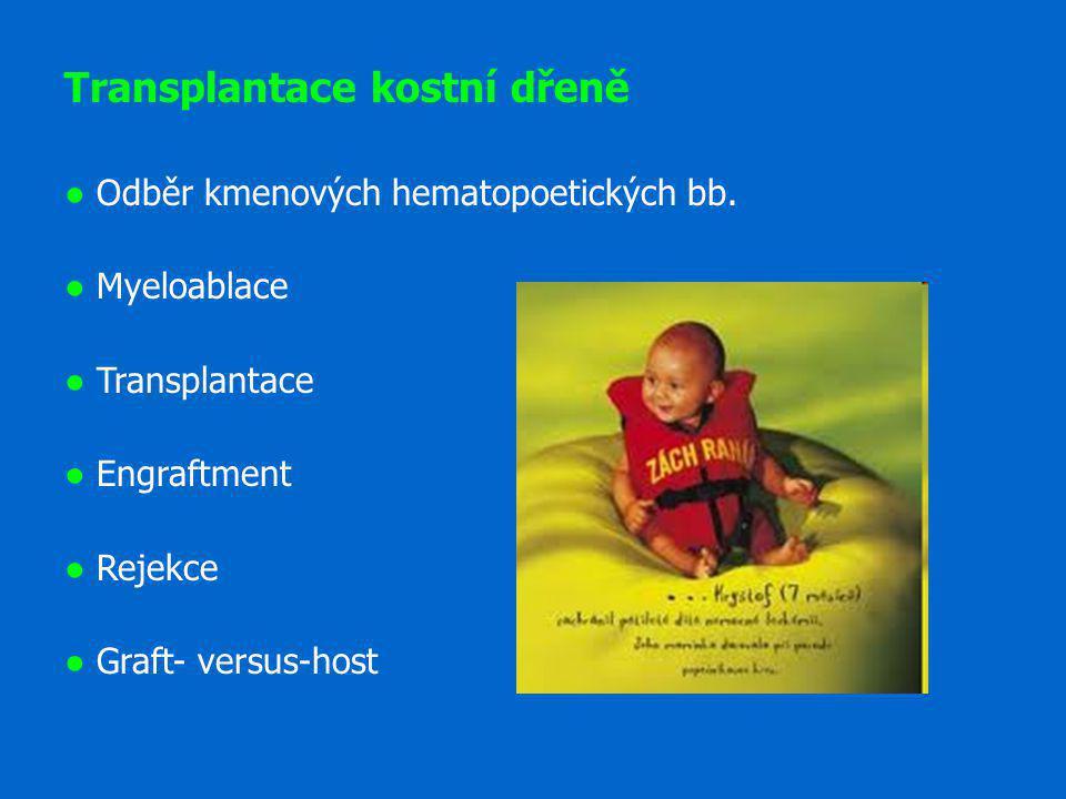 Transplantace kostní dřeně ● Odběr kmenových hematopoetických bb. ● Myeloablace ● Transplantace ● Engraftment ● Rejekce ● Graft- versus-host