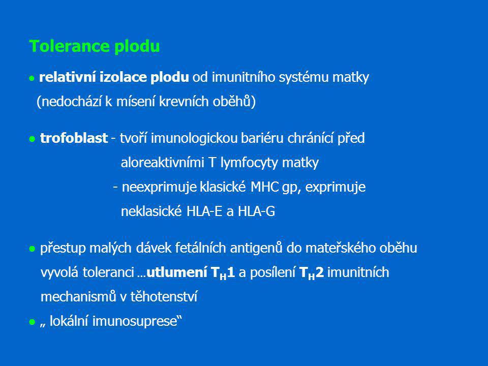 Tolerance plodu ● relativní izolace plodu od imunitního systému matky (nedochází k mísení krevních oběhů) ● trofoblast - tvoří imunologickou bariéru c