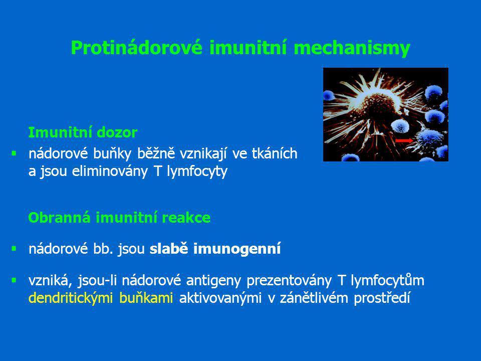 Protinádorové imunitní mechanismy Imunitní dozor  nádorové buňky běžně vznikají ve tkáních a jsou eliminovány T lymfocyty Obranná imunitní reakce  n