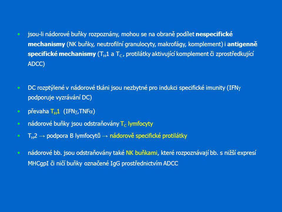  jsou-li nádorové buňky rozpoznány, mohou se na obraně podílet nespecifické mechanismy (NK buňky, neutrofilní granulocyty, makrofágy, komplement) i a