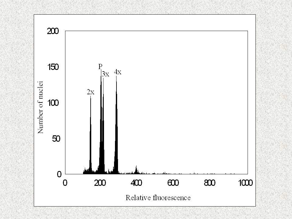 4x2x2x + 4x Distribuce cytotypů před 40 roky (dle Chrtková 1973)Distribuce cytotypů v současnosti