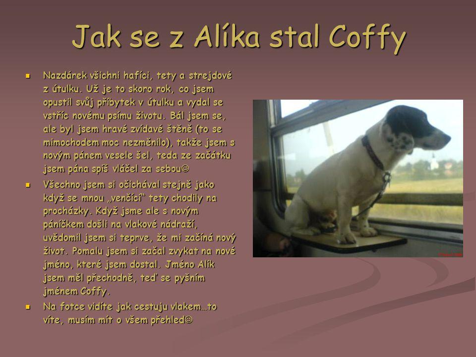 Jak se z Alíka stal Coffy Nazdárek všichni hafíci, tety a strejdové z útulku.