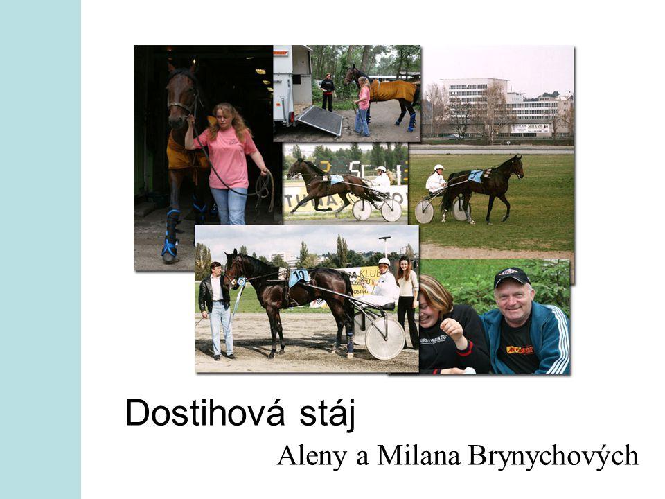 Dostihová stáj Aleny a Milana Brynychových