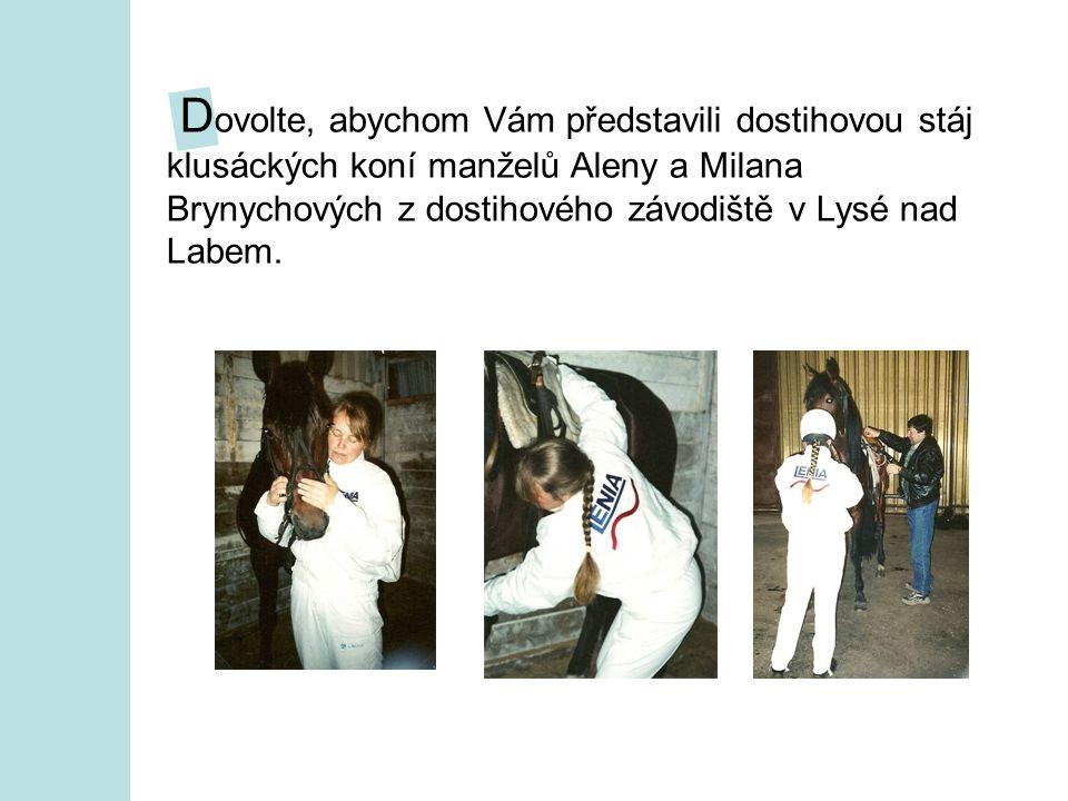 D ovolte, abychom Vám představili dostihovou stáj klusáckých koní manželů Aleny a Milana Brynychových z dostihového závodiště v Lysé nad Labem.