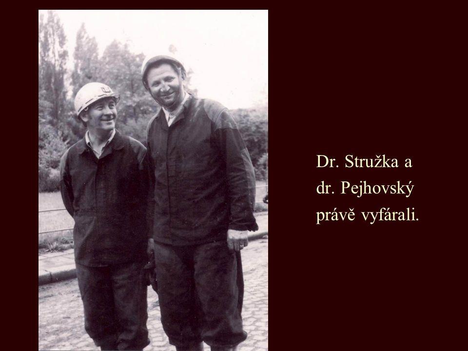 Dr. Stružka a dr. Pejhovský právě vyfárali.