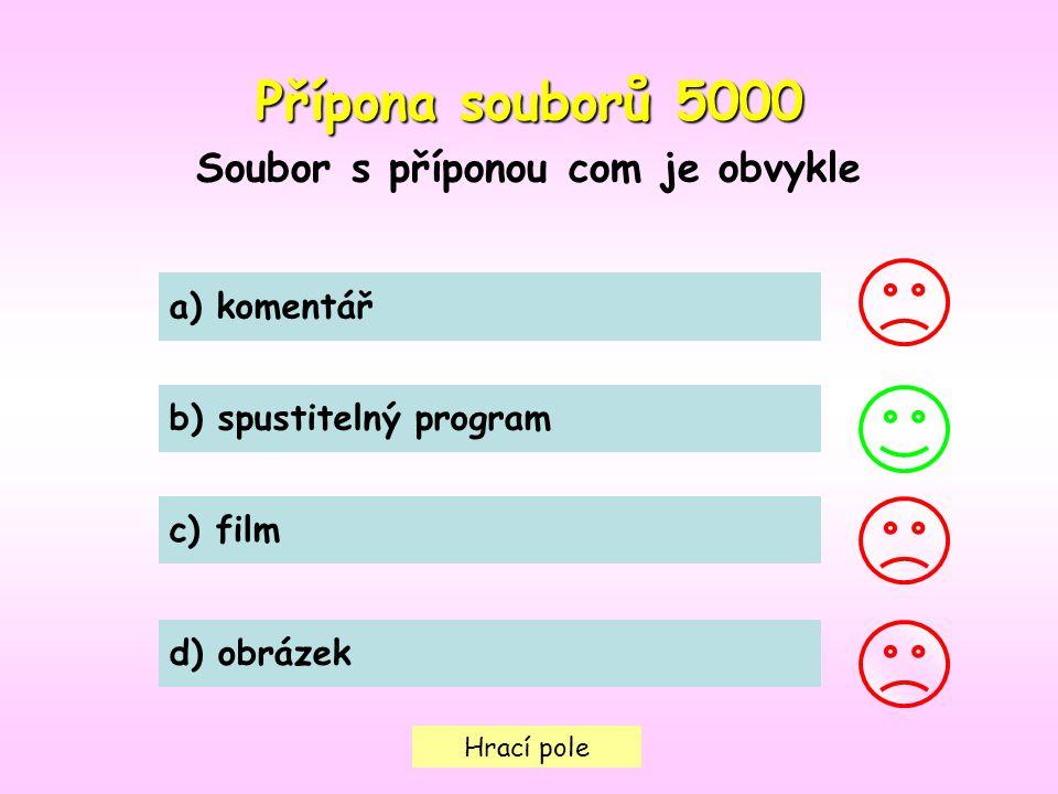 Hrací pole Přípona souborů5000 Přípona souborů 5000 Soubor s příponou com je obvykle a) komentář b) spustitelný program c) film d) obrázek