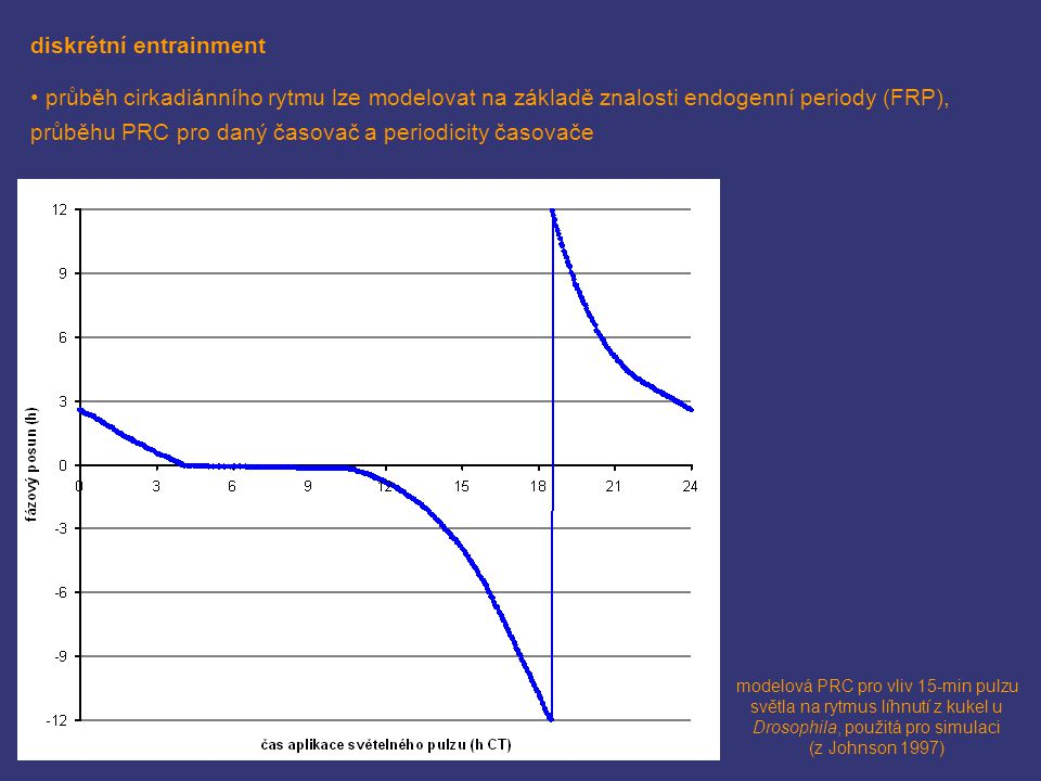 diskrétní entrainment průběh cirkadiánního rytmu lze modelovat na základě znalosti endogenní periody (FRP), průběhu PRC pro daný časovač a periodicity