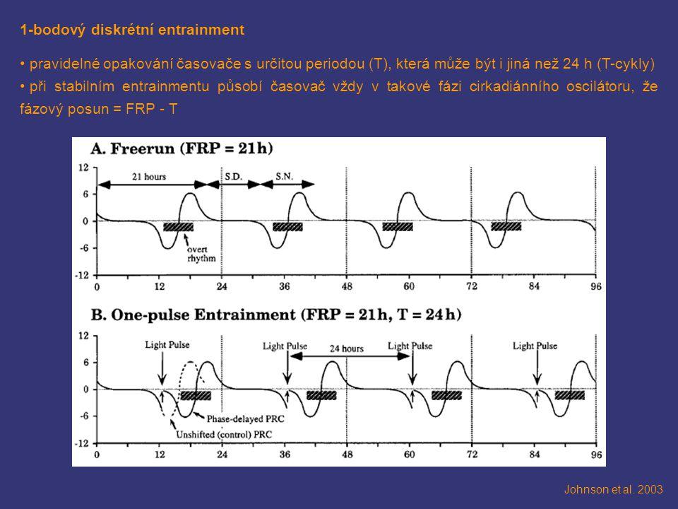1-bodový diskrétní entrainment pravidelné opakování časovače s určitou periodou (T), která může být i jiná než 24 h (T-cykly) při stabilním entrainmen