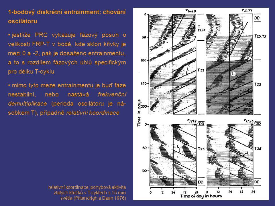 1-bodový diskrétní entrainment: chování oscilátoru jestliže PRC vykazuje fázový posun o velikosti FRP-T v bodě, kde sklon křivky je mezi 0 a -2, pak j